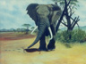 African Elephant in the Savanna